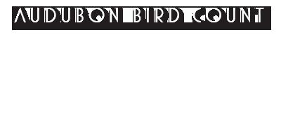 Audubon Bird Count